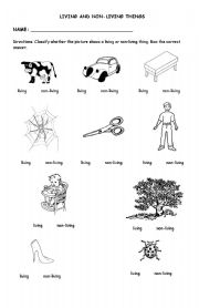 Living and Non Living Things 2 - ESL worksheet by chicheron