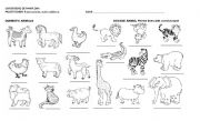 English Worksheets: SAVAGE AND DOMESTIC ANIMALS