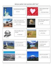 English Worksheets: How questions 2/2