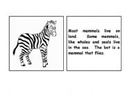 English worksheet: Zebra parts of the body booklet