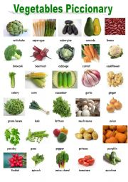 comparative study of common vegetable starches