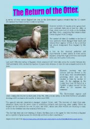 English Worksheets: The Return of the Otter - Answer Key included