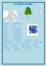English Worksheets: Let�s measure!