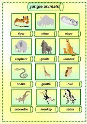 English Worksheets: jungle animals pictionary