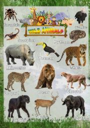 english worksheets wild animals worksheets page 19