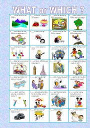 English Worksheets: WHAT or WHICH ?-EDITABLE-