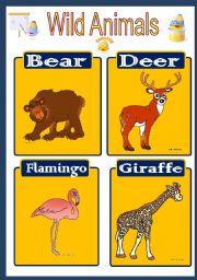 English Worksheets: Wild Animal Flashcard 4