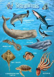English Worksheets: Sea animals 1/2