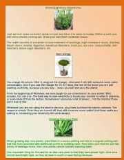 English Worksheets: Conservation
