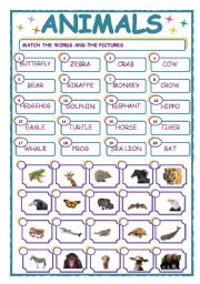 English Worksheets: MATCHING  EXERCISE - ANIMALS