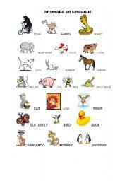 English Worksheets: ANIMALS IN ENGLISH