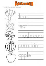 Autumn vocabulary worksheets 1