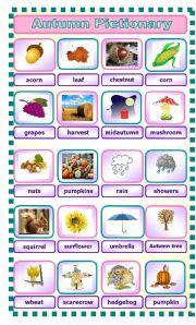 English Worksheet: Autumn 3