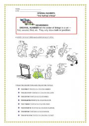 English Worksheets: THE TURTLES�RACE