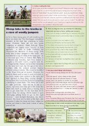 English Worksheets: Sheep racing revival!