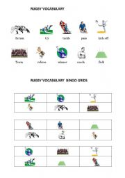 English Worksheet: Rugby vocabulary and bingo grid