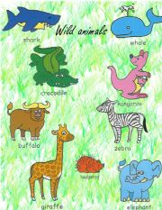 English Worksheets: Animals Pictionary 2