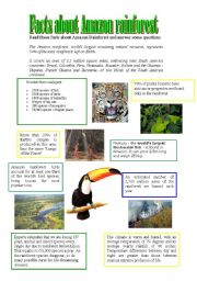 English Worksheet: Facts about Amazon rainforest