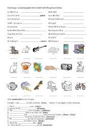 English Worksheet: Vocabulary/ Apostrophe �s