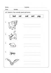 English Worksheets: animal Kid