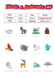 English Worksheets: Birds & Animals