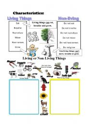 Worksheet Living Vs Nonliving Worksheet living things vs non things