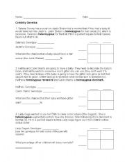 English worksheets: Celebrity Genetics