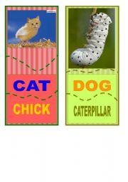 English Worksheets: Crazy animal jisaw  4/6