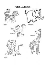 wild animals coloring esl worksheet by kalaquendi. Black Bedroom Furniture Sets. Home Design Ideas