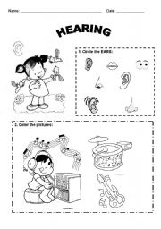 English Worksheets: Hearing