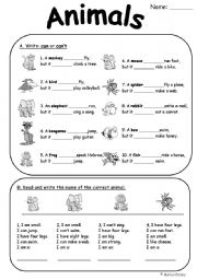 English Worksheet: Animal can/can�t and riddles