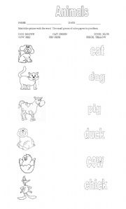 English Worksheet: ANIMALS OLD MC DONALD