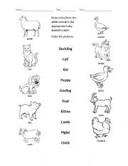 baby animal names 2 esl worksheet by christietakacs. Black Bedroom Furniture Sets. Home Design Ideas