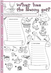 English Worksheets: What has the Bunny got?
