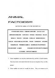 English Worksheets: Guessing ANIMALS