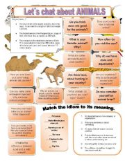 English Worksheets: Let�s chat about ANIMALS