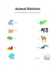 English Worksheet: Animal Habitats Matching