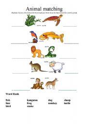 English Worksheets: Animals Naming