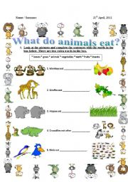 english teaching worksheets what do animals eat. Black Bedroom Furniture Sets. Home Design Ideas