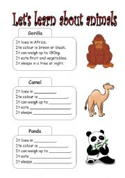 English Worksheets: let�s learn about animals