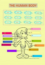 English Worksheets: The human body - vocabulary