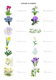 Spring flowers vocabulary esl worksheet by sonya1581 english worksheet spring flowers vocabulary mightylinksfo