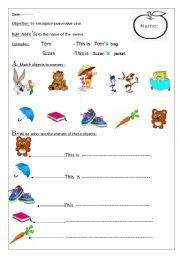 cases of nouns worksheets pdf