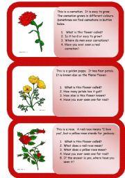 English Worksheet: flowers - mini comprehensions