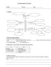 English Worksheet: sense organs