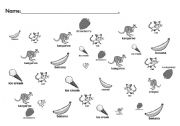 English Worksheets: Animal Find It