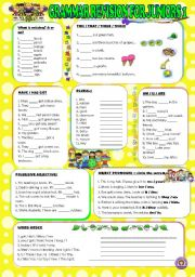 English Worksheet: GRAMMAR REVISION FOR JUNIORS 1