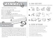 English Worksheets: Mammals
