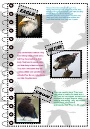 English Worksheets: FACT ABOUT ANIMALS SERIES 1 (birds 1 )