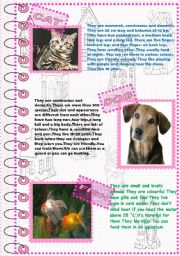 English Worksheet: FACTS ABOUT ANIMALS 2 (domestic animals 1)